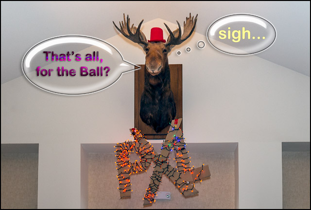 Did the Moose Missed You?