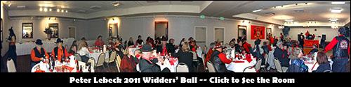 Widders' Ball Panorama
